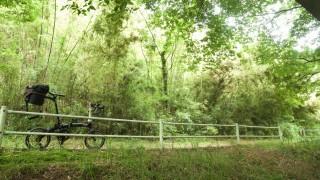都会のオアシス花見川サイクリングロードへ行ってみよう!