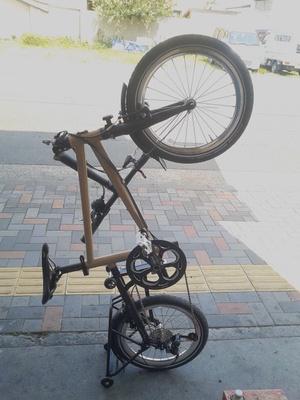 tyrellive-vertical-standing
