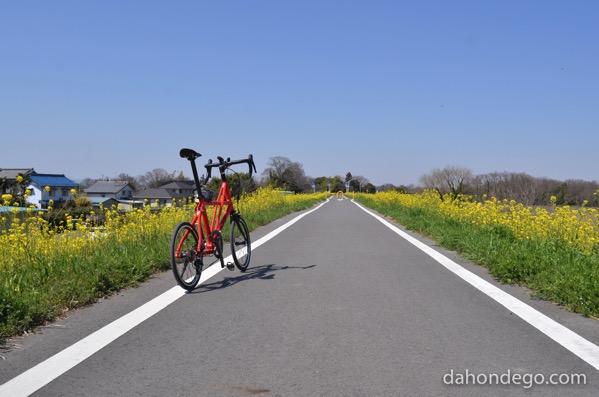 春はすぐそこ、サイクリングの準備をしよう!
