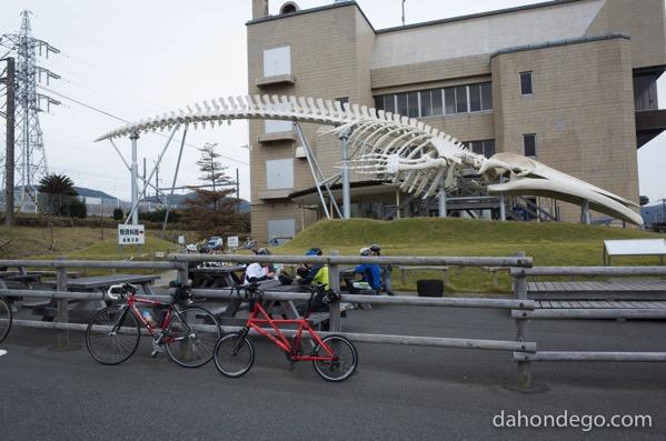 千葉県道の駅29全部をサイクリングで制覇!(を目指す)