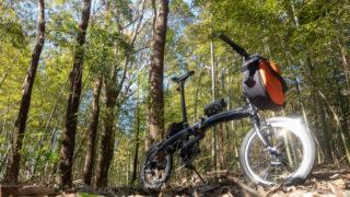 千葉県と世界の自転車ニュースをお届け!【2019年1月】