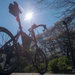 2019年折りたたみ自転車Tyrell FX購入ガイド