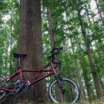 決め手は素敵な赤色♪折りたたみ自転車Tyrell FXを購入するまで【購入者インタビュー】
