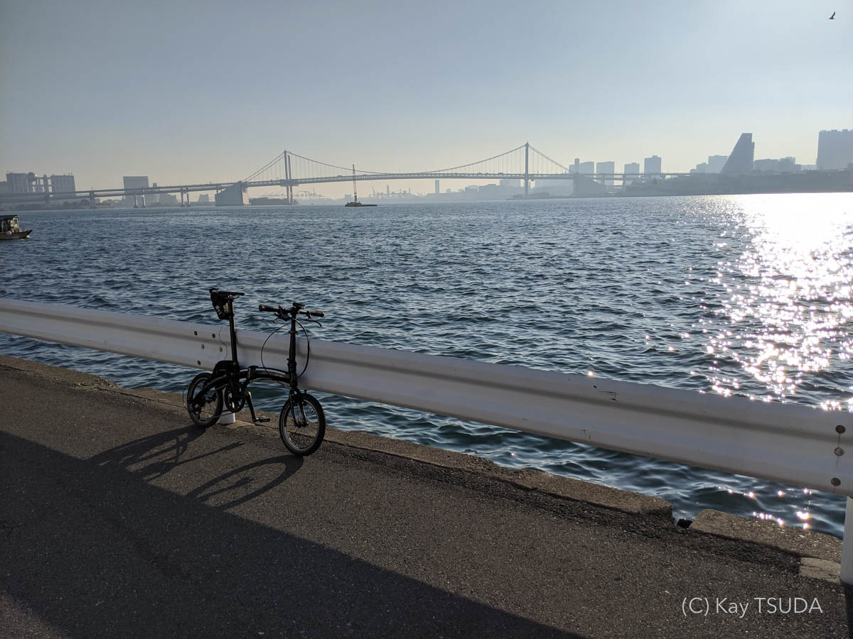 Dahon curve d7 goes around chuo city 14