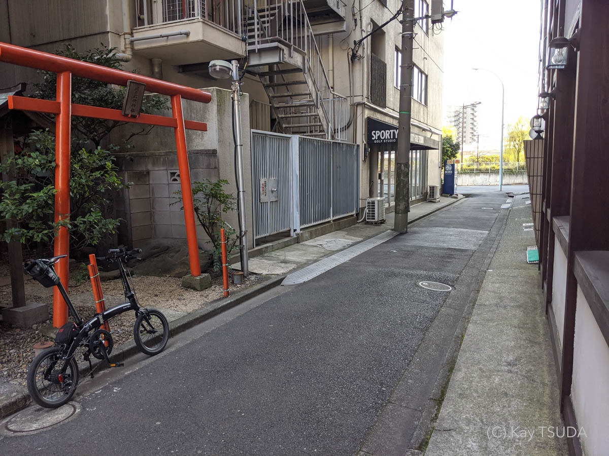 Dahon curve d7 goes around chuo city 4