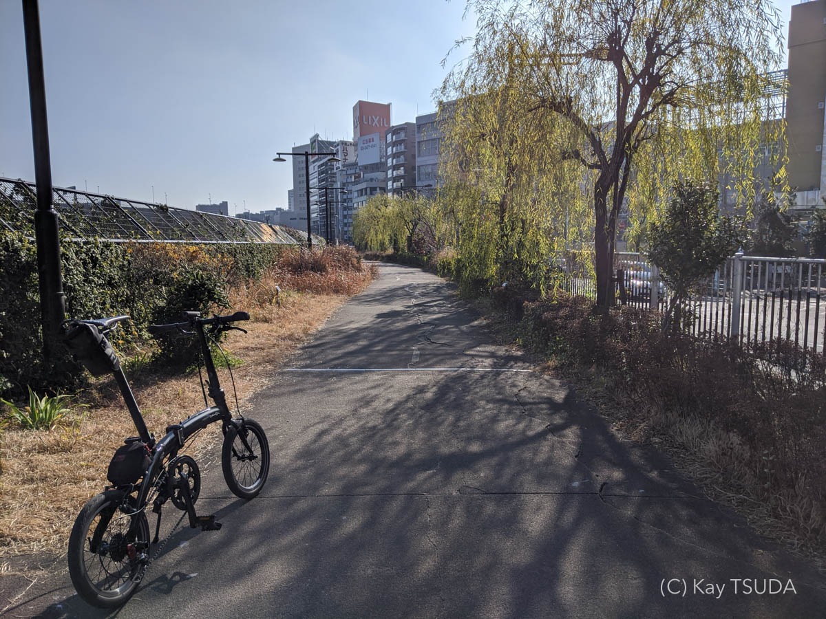 Dahon curve d7 goes around chuo city 5