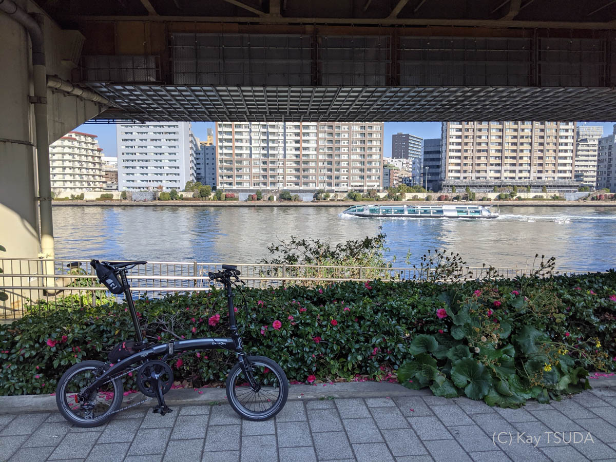 Dahon curve d7 goes around chuo city 6