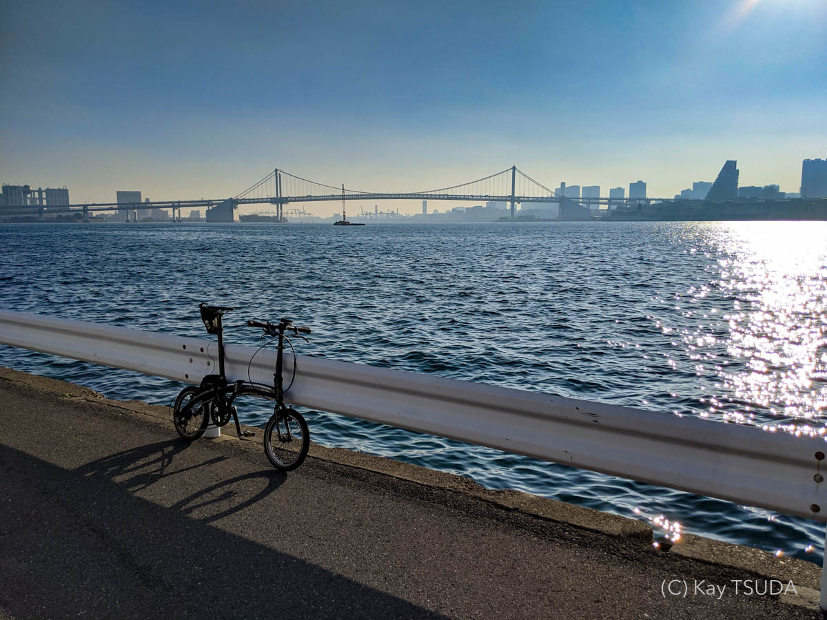 Everything about dahon curve d7 after 9000km 12