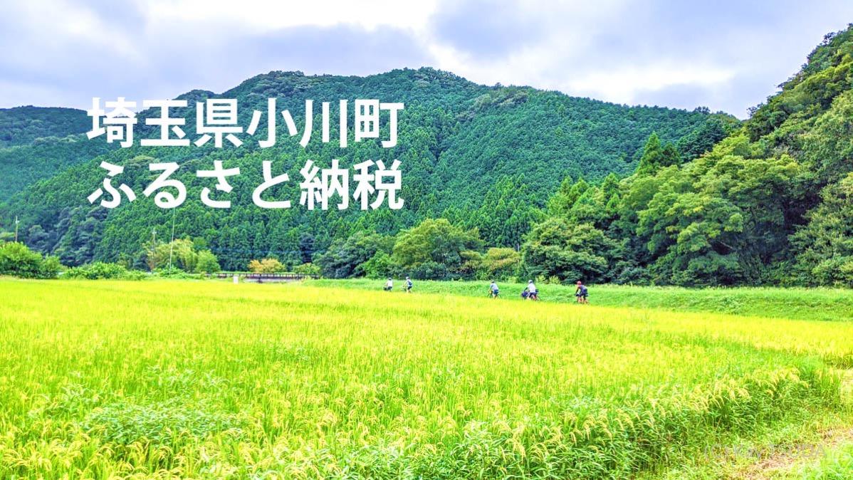 Ogawamachi ride 31