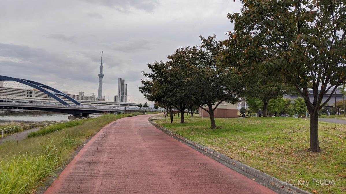 Sumida river cycling 16