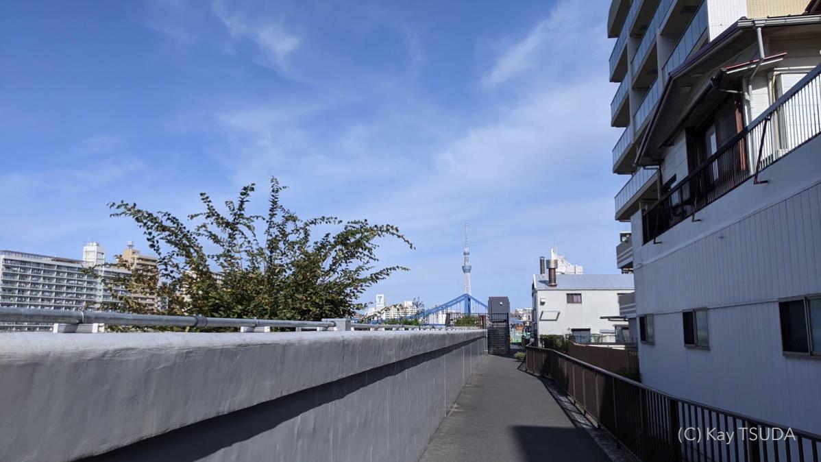 Sumida river cycling 18