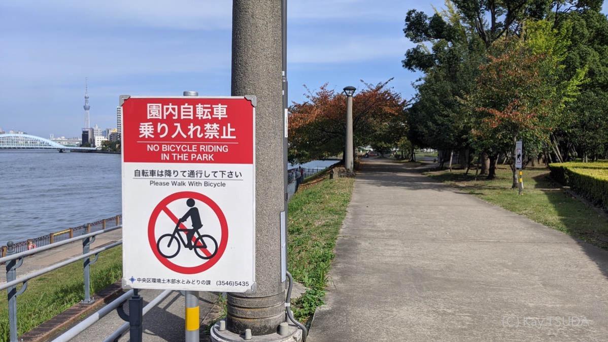 Sumida river cycling 2