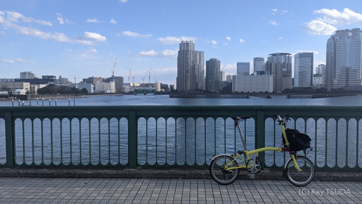 Brompton m1l reviewed 3