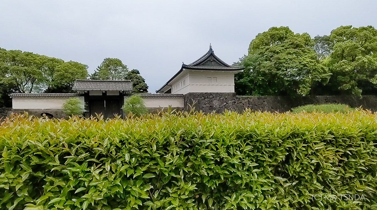 A trip around the imperial palace in 2021 21