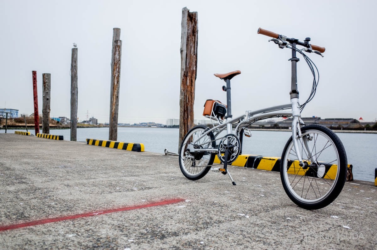 Why dont you buy an e bike for the family ride 81402
