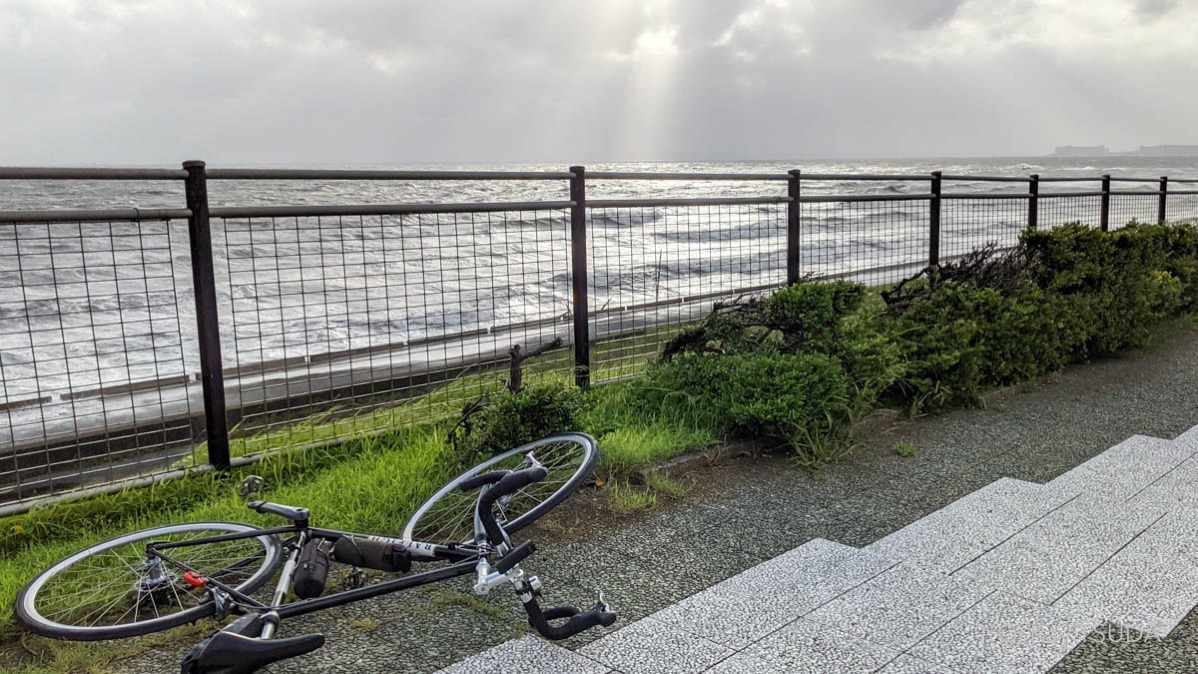 The best route for the tokyo bay round trip 12